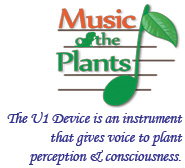 Music & Devices Logo