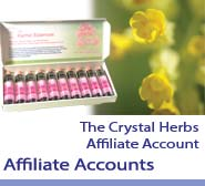Affiliate Accounts