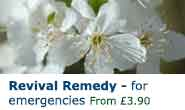 Revival Remedy