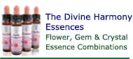 Buy Divine Harmony Essences