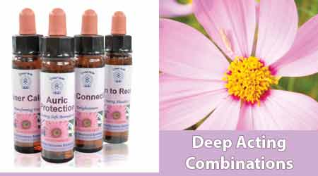 Buy Divine Harmony Essences - Shop