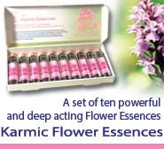 Karmic Essences
