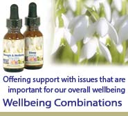 Wellbeing Combinations