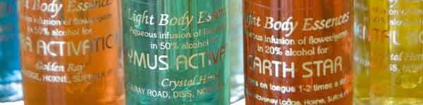 Light Body Essences