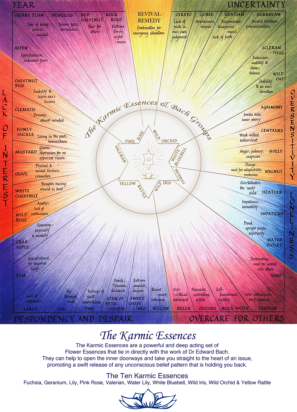 Karmic Flower Essences