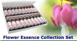 Flower Essence Collection