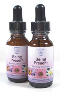 Being Present Essence - Grounding