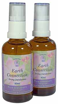 Earth Connection Spray Essences - two 50ml spray botles with labels
