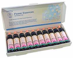 Flower Essence Self Select Set