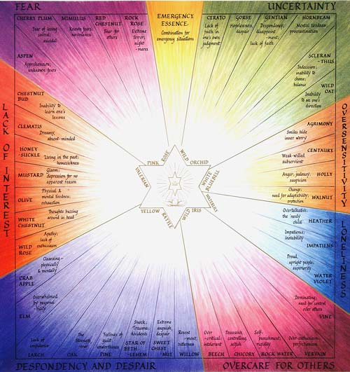 Karmic Essences & Bach groups