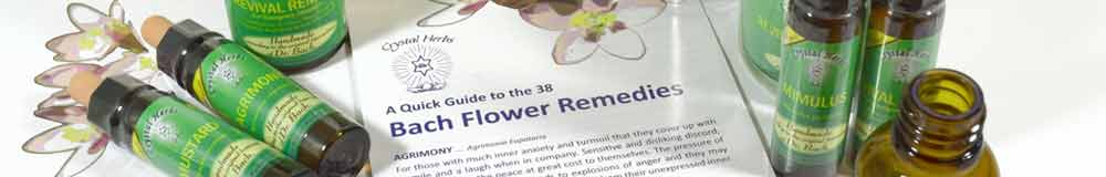Bach Flower Remedy bottles and leaflet