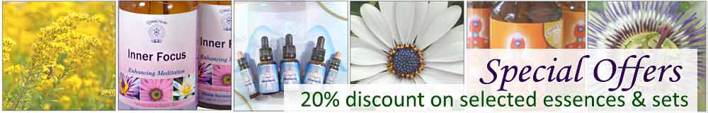 Flower Essences, bottles and flowers - special offers 20% discount